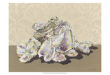 Shell Collection II Prints by Dianne Miller