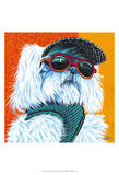 Cute Pups IV Prints by Carolee Vitaletti