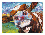 Curious Cow I Prints by Carolee Vitaletti
