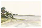 Solitary Coastline II Print by Dianne Miller