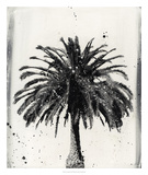 L.A. Dream I Giclee Print by Naomi McCavitt