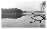 Croton Reservoir Prints by James McLoughlin