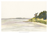 Solitary Coastline I Prints by Dianne Miller