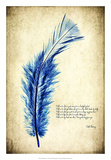 Feather in Color I Giclee Print by Honey Malek