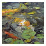 Golden Koi Giclee Print by Chuck Larivey