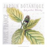 Jardin Fleur I Prints by  Redstreake