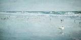 Coastal Breeze Plakat av Heather Jacks