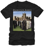 Downton Abbey- Extended Family Shirts