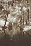 Water Under the Bridge Prints by Ily Szilyagi
