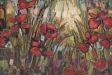 Opal Prints by Crystal Heath