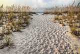Path to the Beach Prints by Michael Cahill