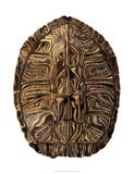 Tortoise Shell Detail II Giclée-tryk af Naomi McCavitt