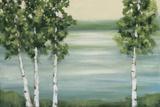 Quiet Lake Posters av Rita Vindedzis