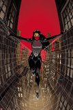 Silk No. 1 Cover Prints by Dave Johnson