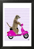 Meerkat on Pink Moped Art by  Fab Funky