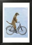 Meerkat on Bicycle Print by  Fab Funky