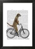 Meerkat on Bicycle Prints by  Fab Funky