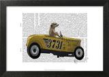 Meerkat in Hot Rod Prints by  Fab Funky