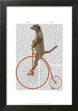 Meerkat on Orange Penny Farthing Prints by  Fab Funky