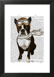 Boston Terrier Flying Ace Prints by  Fab Funky