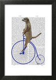 Meerkat On Blue Penny Farthing Posters by  Fab Funky