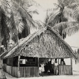 Bikini Islanders in their Thatched Roof Home, Ca. March 1946 Photo