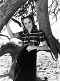 Olivia De Havilland, 1939 Photo