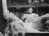 Young Puerto Rican Women Working in a Clothing Factory Photo