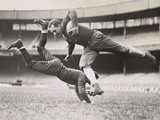 Chicago Bears Teammates Practicing as Joe Zeller Tries to Tackle Red Grange Photo