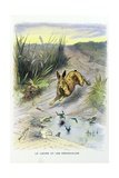 The Hare and the Frogs, La Fontaine's Fables, Ca, 1900 Giclee Print by Gaston Gelibert
