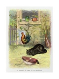 The Cat, the Rooster, and the Mouse, La Fontaine's Fables, Ca, 1900 Giclee Print by Gaston Gelibert