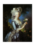 Queen Marie Antoinette with a Rose, 1783 Giclee Print by Elisabeth Vigee Le Brun