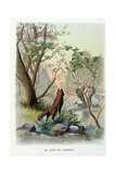The Wolf and the Lamb, La Fontaine's Fables Giclee Print by Gustave Fraipont