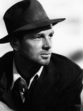 The Asphalt Jungle Photo