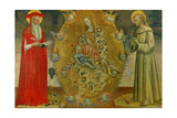 Madonna and Child in Glory of Cherubim, with Sts. Jerome and Francis Giclee Print