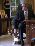 President George W. Bush Pets Spot in the Oval Office of the White House. Oct. 1, 2001 Photo