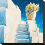Greek Blossom Stretched Canvas Print by Bjoern Baar