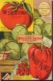 Maule Seed Book Philadelphia Stretched Canvas Print
