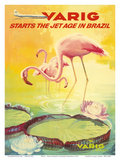 Brazil -Pink Flamingos wade in a Lily Pond - Variq Airlines Prints by  Pacifica Island Art