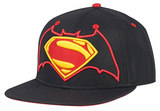 Batman & Superman- Hero Shields Hat
