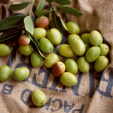 Green Olives on Burlap Photographic Print by George Seper