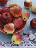 Apples and Pears in Fruit Bowl Photographic Print by Vladimir Shulevsky