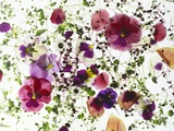 Edible Flowers and Sprouts Photographic Print by Luzia Ellert