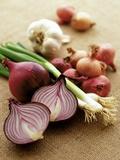 Various Onion Family Vegetables Reproduction photographique par Peter Howard Smith