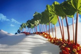 Avenue of Rhubarb Sticks and Fruit in a Sugar Desert Photographic Print by Hartmut Seehuber