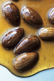 Almonds in Caramel Photographic Print by Marc O. Finley