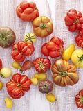 Various Varieties of Tomatoes Photographic Print by Oliver Brachat