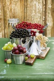 A Still Life of Currants and Gooseberries in Assorted Aluminium Containers Photographic Print by Sabine Löscher