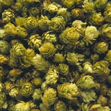 Hops (Filling the Picture) Photographic Print by Herbert Lehmann