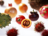 Various Exotic Fruits on a Sheet of Glass Photographic Print by Damir Begovic